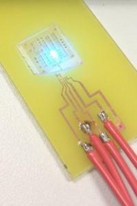 Un LED de nitruro de galio, o GaN, recubierto con una capa cuya estructura emula la de las escamas de las luciérnagas analizadas. (Foto: Nicolas André)