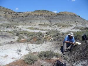 Paul Renne recoge una muestra de una capa cercana al nivel que corresponde a la extinción de los dinosaurios. (Foto: Courtney Sprain / BGC)