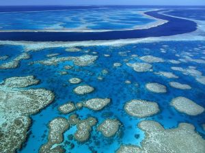 El mar absorbe mucho CO2, que de otro modo se sumaría al que ya hay acumulado en la atmósfera y agravaría el calentamiento global. ¿Podrá el subsuelo del fondo marino acoger el resto del exceso de CO2 atmosférico?