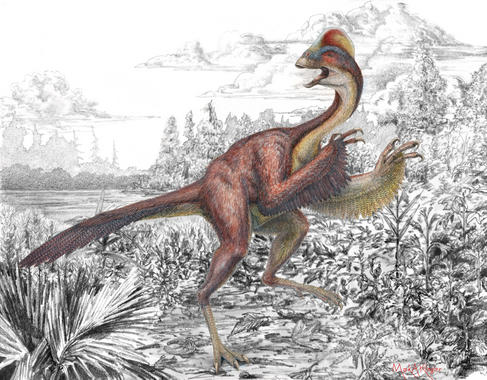 Científicos de los museos Carnegie y Smithsonian, y de la Universidad de Utah presentan hoy el descubrimiento y descripción de una nueva especie de dinosaurio de más de 200 kg de peso –parecido a un ave con garras afiladas– que vagaba por las Dakotas (EE UU) junto al Tyrannosaurus rex hace 66 millones de años. Lo han denominado 'pollo del infierno'.