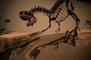 Muchos de los esqueletos de dinosaurios estudiados muestran numerosas señales de lesiones óseas graves, de las que estas bestias se recuperaron de manera asombrosa. Las lesiones equivalentes en humanos nos matan si no recibimos asistencia médica a tiempo. (Foto: Phil Manning)